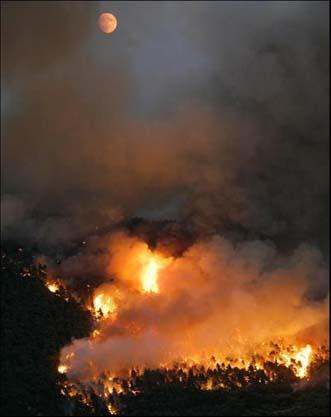 fire_18.jpg